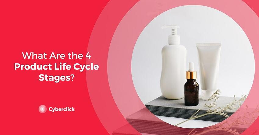 What Are the 4 Product Life Cycle Stages