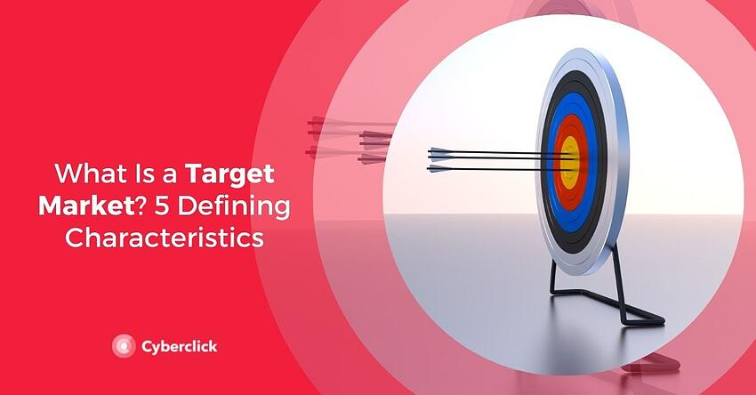What Is a Target Market  Defining Characteristics