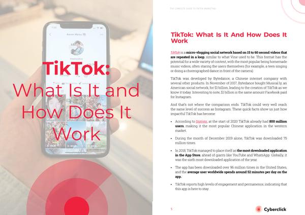 TikTok Ebook